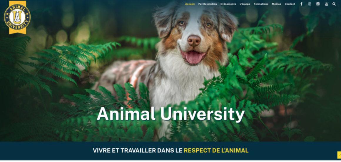 Animal University - Création d'un site web avec WordPress - etisse.ch, webmaster, Genève