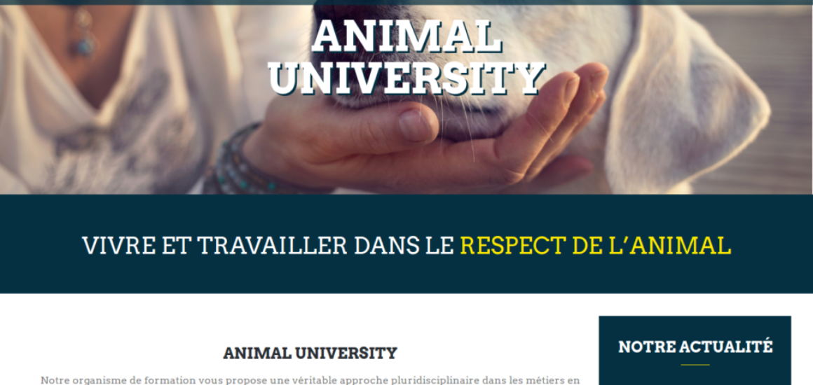 Animal-University - Développement d'extension sur mesure WordPress - etisse.ch, Genève
