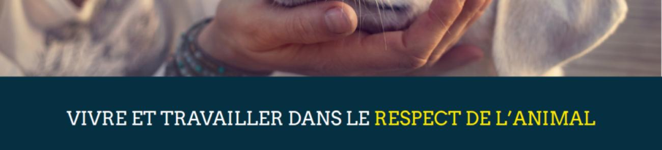 Animal-University - Développement d'extension sur mesure WordPress - etisse.ch, Genève