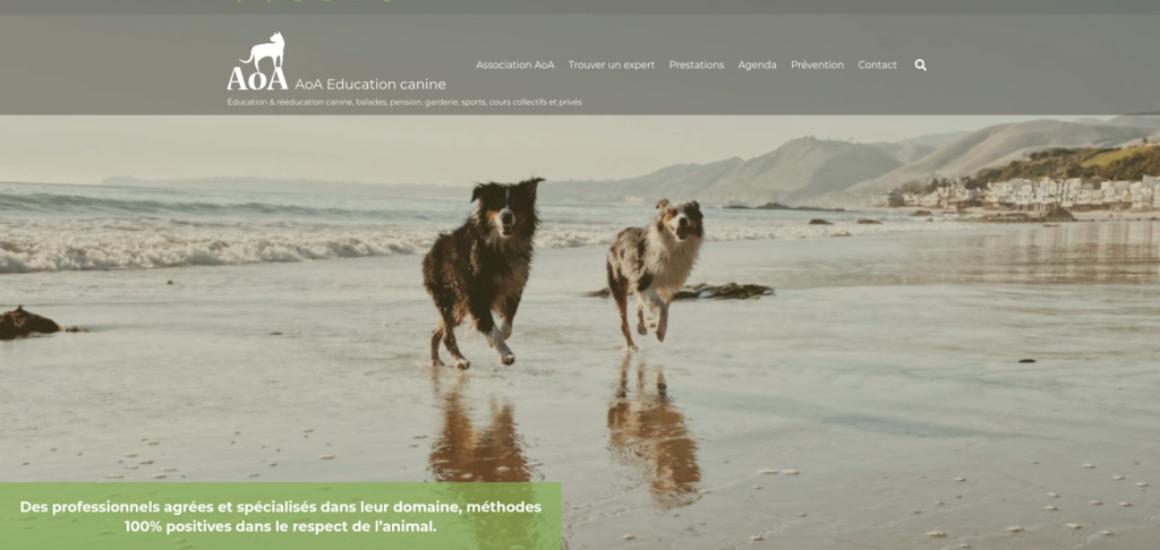 Association AoA éducation canine - refonte d'un site WordPress, etisse.ch - Genève