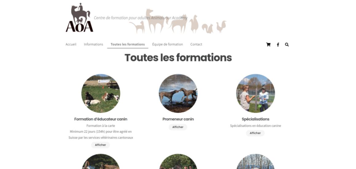 AoA Formation - Création d'un site web avec WordPress et WooCommerce - etisse.ch, webmaster, Genève
