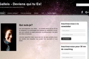 Galleis - site web sous Wordpress mis en place par eTisse.ch