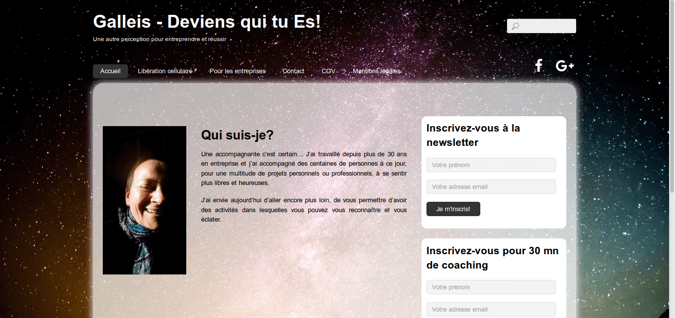 Galleis - site web sous Wordpress mis en place par eTisse.ch