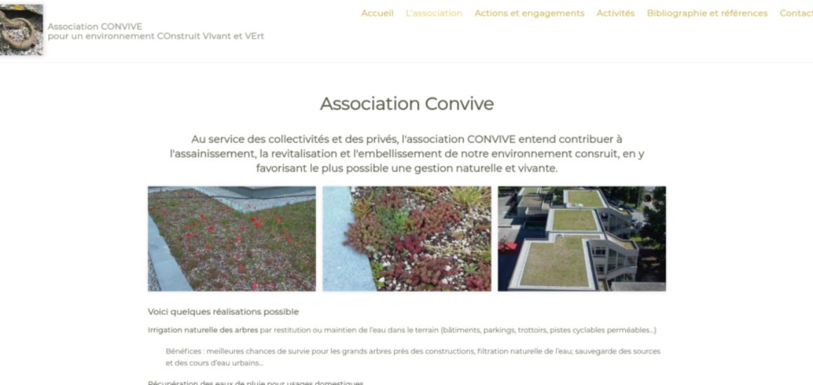 Association Convive - Refonte et réorganisation du site avec WordPress