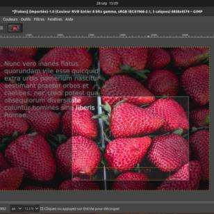 Formation: Retoucher vos photos avec Gimp - etisse.ch, Genève